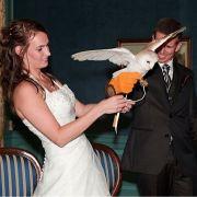 Bruidringenkerkuilschrieken2
