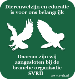 logo verantwoord roofvogels stichting.png